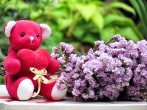 Le concept pour l'amour le jour de valentines, ours de nounours reposent la prise le coeur rouge par le côté avec le bouquet des  Photo stock