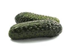 Le concombre végétal vert est produit utile pour des salades Photographie stock libre de droits