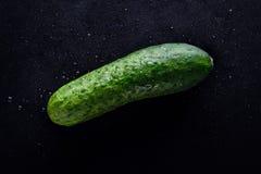 Le concombre vert frais humide sur un fond noir avec de l'eau se laisse tomber Photo libre de droits