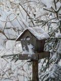 Le conducteur neigeux Photo libre de droits