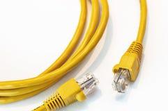 Le connecteur jaune de réseau a isolé images libres de droits