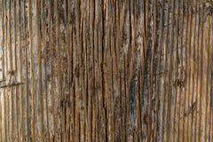 Le conseil en bois de Brown avec les taches noires et blanches donnent à la photo une consistance rugueuse Images libres de droits