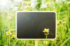 Le conseil en bois se connecte le petit fond de fleurs avec la lumière chaude t Photographie stock