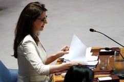 Le Conseil 7760 les Nations Unies se réunissantes de sécurité Image libre de droits