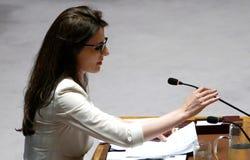 Le Conseil 7760 les Nations Unies se réunissantes de sécurité photographie stock libre de droits