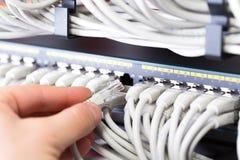 Le conseiller informatique relie un câble de réseau dans le commutateur dans le datacenter photo libre de droits
