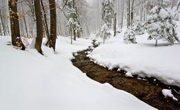 Le conte de fées de l'hiver Photos libres de droits