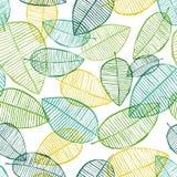 Le contour sans couture de vecteur part du modèle Vert et blanc Photographie stock libre de droits