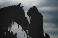 Le conture d'une fille et de son cheval Image stock