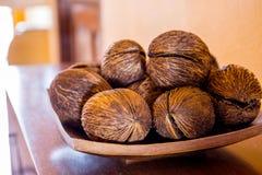 le coperture della noce di cocco decorano Fotografia Stock Libera da Diritti