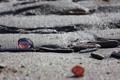 Le coperture viola su una distensione hanno increspato la spiaggia della sabbia Fotografia Stock