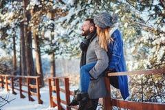Le coppie amorose felici che camminano nella foresta nevosa dell'inverno, spendente il natale vacation insieme Fotografia Stock