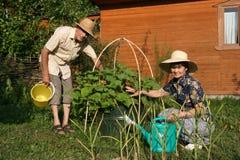 Le coppie anziane in un giardino Immagini Stock Libere da Diritti