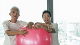 Le coppie asiatiche senior felici si divertono con la classe della palla di yoga della palestra Fotografia Stock Libera da Diritti