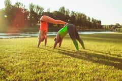 Le coppie che fanno yoga Immagine Stock Libera da Diritti