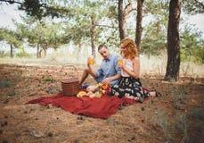 Le coppie hanno un picnic sul plaid rosso con i frutti differenti Fotografia Stock Libera da Diritti