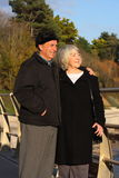 Le coppie maggiori godono della camminata della spiaggia. Fotografia Stock Libera da Diritti