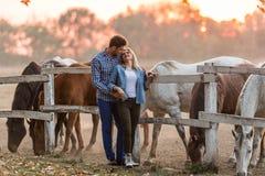 Le coppie nell'amore godono del giorno nella natura ed in cavalli fotografia stock libera da diritti