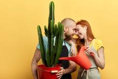 Le coppie romantiche divertenti sono affettuose di presa della cura dei fiori immagini stock libere da diritti