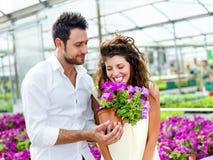Le coppie si divertono scegliendo i vasi da fiori in una serra Fotografie Stock