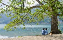 Le coppie si siedono sotto il grande albero sulla spiaggia che se esamina fotografie stock