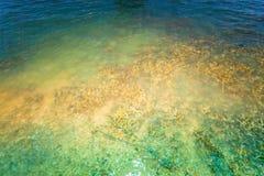 Le corail émerge de l'eau à un niveau d'eau réduit Photographie stock
