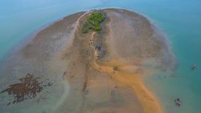 Le corail émerge de l'eau à un niveau d'eau réduit Photographie stock libre de droits