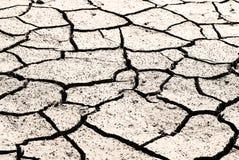Le cordon de sécheresse était criqué. Images libres de droits