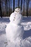 Le cordon du bonhomme de neige Photo stock