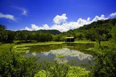 Le Costa Rica Photographie stock libre de droits