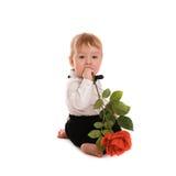 Le costume de monsieur de bébé garçon et le papillon de lien avec se sont levés Photo libre de droits