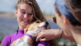 Le costume de natation violet de port de jolie femme de brune tient le chien mignon dans des mains banque de vidéos