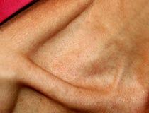 Le cou et l'os minces de la clavicule image stock
