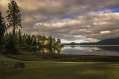 Le coucher de soleil jette la lumière sur des couleurs de chute reflétées dans le lac Quinault photos stock