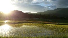 Le coucher du soleil Image stock