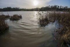 Le coucher du soleil au cours de l'hiver inonde au lac Pebsham près de Bexhill dans le Sussex est, Angleterre photos libres de droits