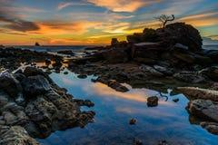 Le coucher du soleil de bonsaïs de roche Photos libres de droits