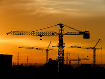 Le coucher du soleil de la grue Photo stock