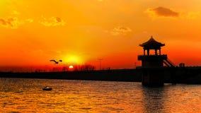 Le coucher du soleil de lac de fleur Photographie stock
