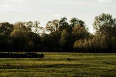 Le coucher du soleil de soirée dans la nature Images stock