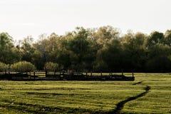 Le coucher du soleil de soirée dans la nature Photo stock