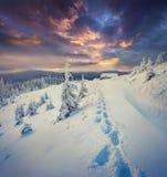 Le coucher du soleil dramatique d'hiver en montagnes carpathiennes avec la neige s'est recroquevillé photo stock