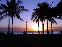 Le coucher du soleil dramatique s'abaisse vers l'océan brillant par la noix de coco image libre de droits