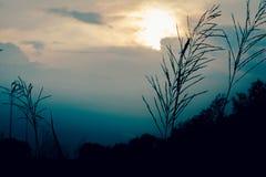 Le coucher du soleil peut dessus rue de Gio photo stock