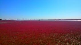 le couloir rouge pittoresque de ressortissant de plage photos stock