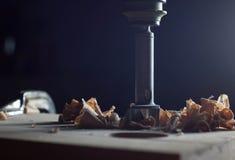 Le coupeur du ` s de Forstner a mordu pour des trous avec la sciure photo stock