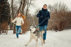 Le couple affectueux gai fonctionne avec le chien de traîneau sibérien pendant la promenade le long de la forêt neigeuse images libres de droits