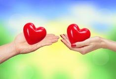Le couple affectueux tenant des coeurs remet dedans la nature lumineuse Image stock