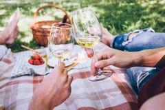 Le couple dans l'amour boit d'un vin blanc sur le pique-nique d'été Photo libre de droits