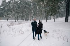 Le couple dans l'amour marche avec le chien enroué dans le jour d'hiver photo stock